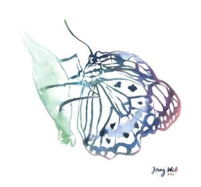 butterfly_150